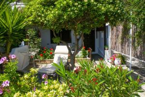 Villa Arni Andros Greece
