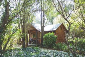 Elands River Lodge, Chaty  Machadodorp - big - 24