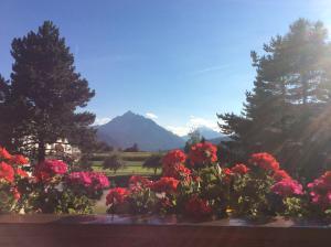 Haus Angelika - bed & breakfast - Innsbruck/Igls - Accommodation - Innsbruck