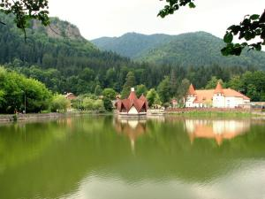 Villa Atriolum, Guest houses  Băile Tuşnad - big - 27