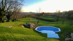 Family friendly apartments with a swimming pool Veli Mlun, Central Istria - Sredisnja Istra - 13099