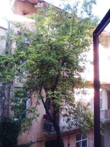 Apartment Rappoporta str., Apartmány  Lvov - big - 15