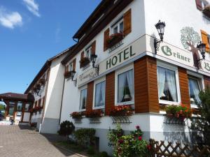 Hotel Landgasthof Grüner Baum - Bad Schussenried