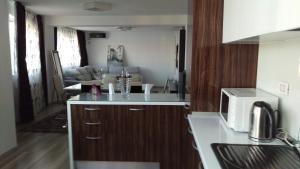 Residence Ciresica, Apartmány  Constanţa - big - 38