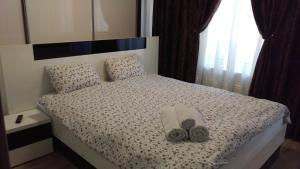 Residence Ciresica, Apartmány  Constanţa - big - 48