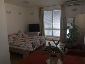 Apartment Praha 4 - Velká Chuchle