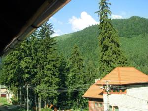 Villa Atriolum, Guest houses  Băile Tuşnad - big - 26