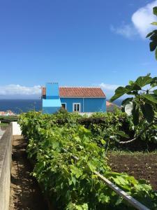 Casa do Vizinho, Porto Judeu