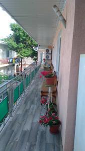 Гостевой дом Вега, Анапа