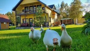 Дом для отпуска Святое Озеро, Важинская Пристань