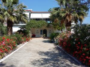 Hostels e Albergues - Elea Guesthouse
