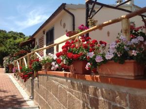 obrázek - Valle Onesta