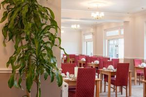 Luccombe Hall Hotel, Hotels  Shanklin - big - 91