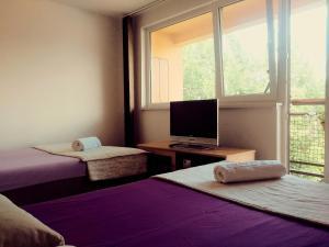 Apartments Ćemo