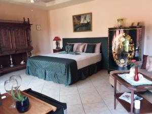 Villa Pelicano, Bed & Breakfasts  Las Tablas - big - 53