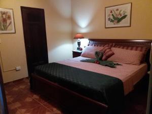 Villa Pelicano, Bed & Breakfasts  Las Tablas - big - 69