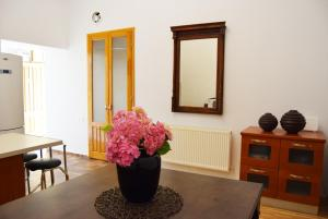 Contessa Central Apartment - Cluj-Napoca