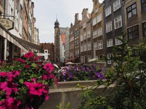 Grand-Tourist Amber Rose Apartment