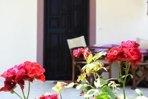 Freddie's Hostel - Sarandë