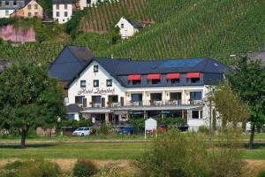 Hotel Zehnthof - Bombogen