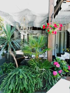 Hotel Helvetia, Hotels  Milano Marittima - big - 31
