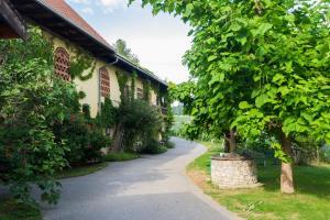 Turistična kmetija Vrezner Apartment