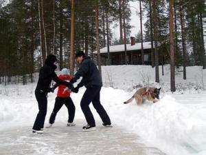 Holiday Home Lomatalo laurinniemi, Nyaralók  Luikonlahti - big - 20