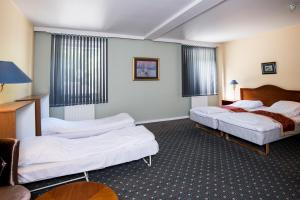 Park Hotel Rjukan, Hotel  Rjukan - big - 37