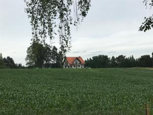 Zaciszny dom nad stawem