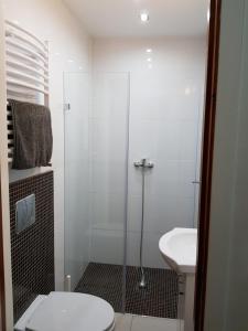 Spa Apartamenty Lidzbark