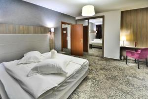 Hotel Europeca, Hotely  Craiova - big - 28
