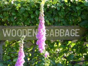 Wooden Cabbage (36 of 74)
