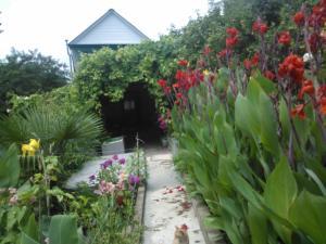 Guest house in Khosta - Lesnoye