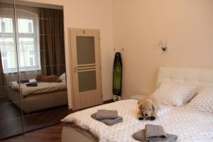 Apartman Belehradska, Appartamenti  Rybáře - big - 12