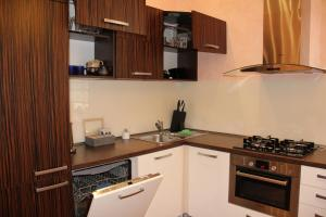 Apartman Belehradska, Appartamenti  Rybáře - big - 16