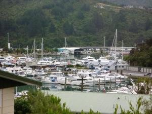 . Picture Perfect in Picton