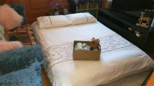 Maggie's super clean& cozy apt, Апартаменты  Шанхай - big - 36