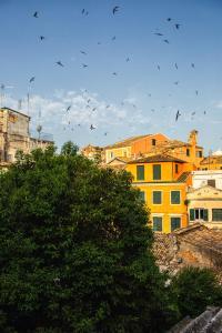 Casa Afrodite, Ferienwohnungen  Korfu-Stadt - big - 40
