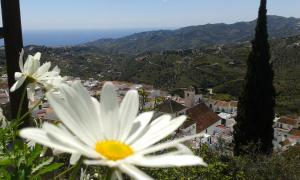 obrázek - Holiday home Villa Ana