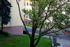 Apartament Center Grodno, Apartmány  Grodno - big - 5