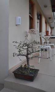 Clan Court Guesthouse, Bed and Breakfasts  Clanwilliam - big - 39