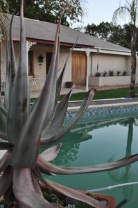 Clan Court Guesthouse, Bed and Breakfasts  Clanwilliam - big - 23