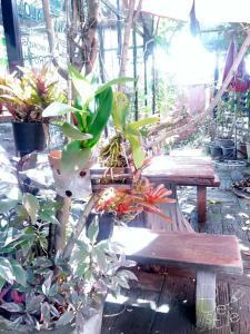 102 Residence, Hotels  San Kamphaeng - big - 142