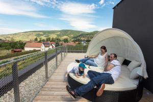 Weinlodge Siedler, Bed and breakfasts  Mautern - big - 17