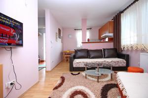 Apartment Slobo - Hotel - Zlatibor