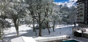 Alehouse Termas de Chillan - Apartment - Nevados de Chillán