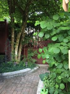 Mundy Park Suites, Ferienwohnungen  Coquitlam - big - 16