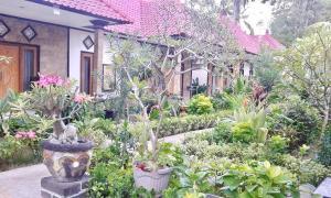 Five Brother's, Ubytování v soukromí  Nusa Lembongan - big - 27