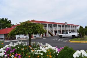 Red Carpet Inn & Suites Culpep..