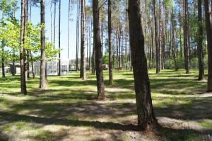 Ośrodek Bosman